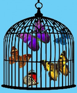 1_a_cage_of_butterflies